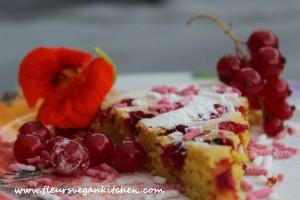 tarta de coacaze rosii3